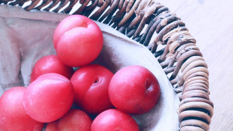 フルーツって美味しい